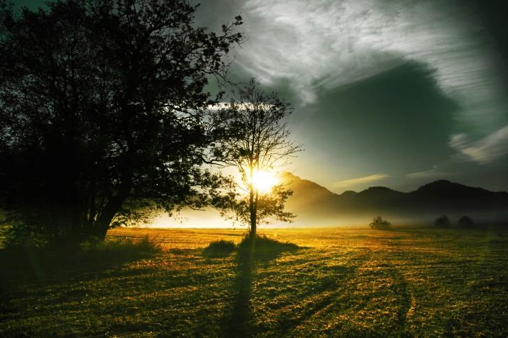 I-raggi-del-sole-del-mattino-montagne-e-alberi-485x728